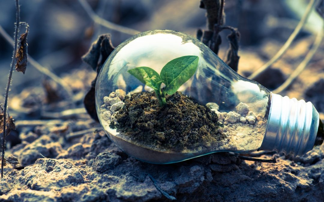 3REUSE: Eco-responsible entrepreneurship and circular economy