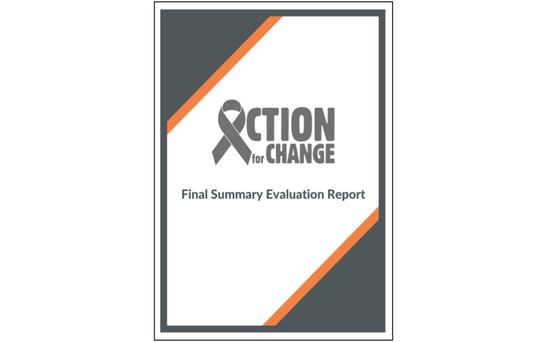 Action for Change – Transnational Project Evaluation and Field Research Report