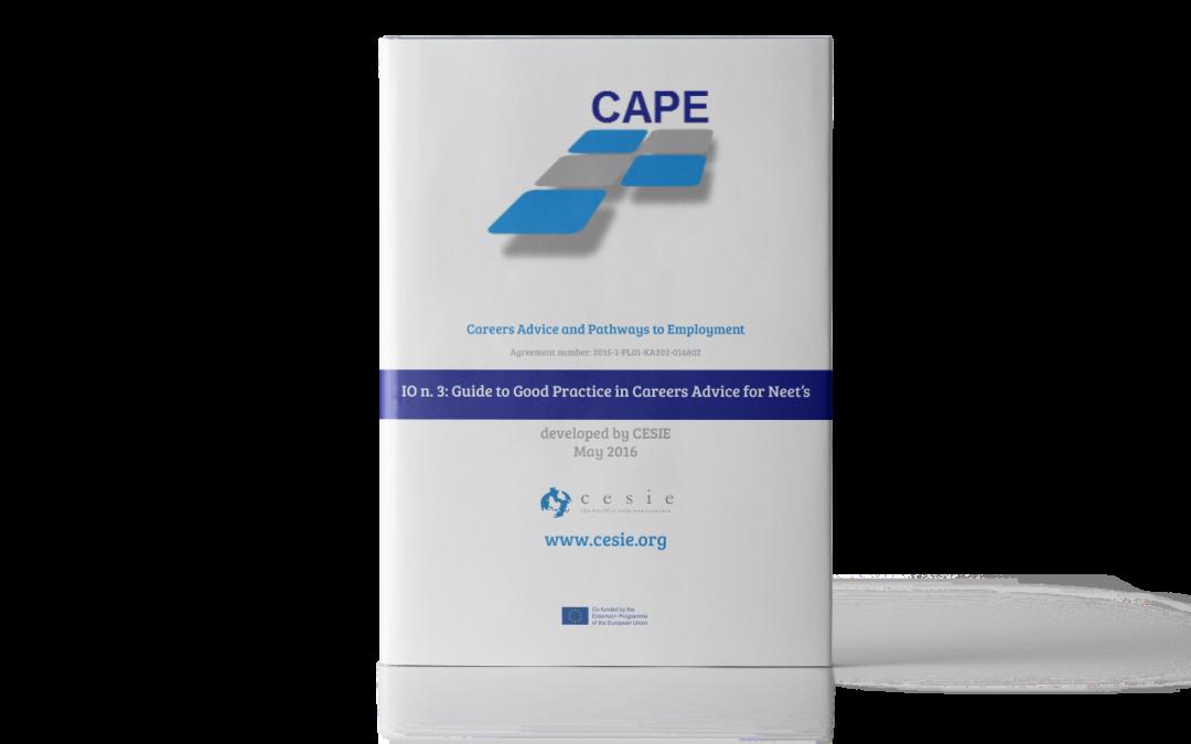 CAPE IO3: Guida alle buone pratiche per l'orientamento dei NEET