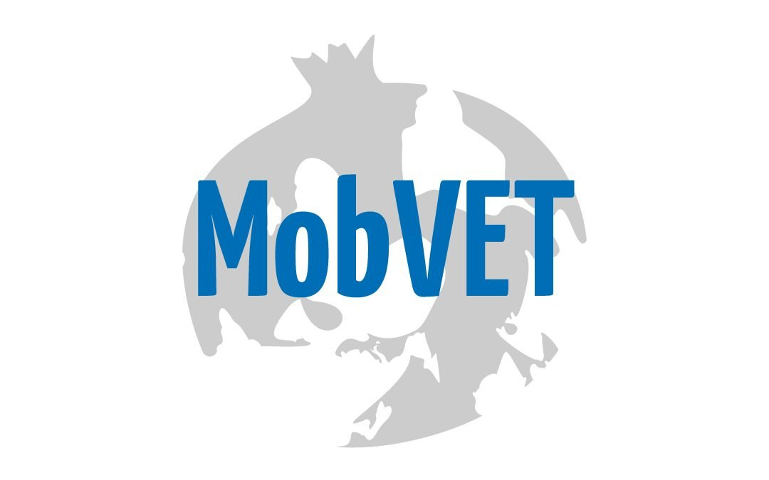 MobVET – Mobility for Vocational Education and Training