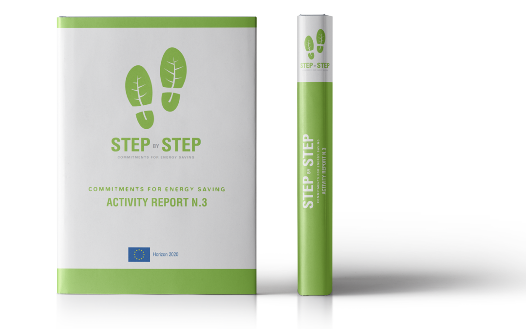 STEP BY STEP – Activity report 3