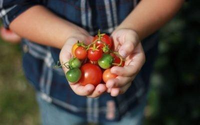 Una nuova alleanza per ridurre le diseguaglianze nel settore agroalimentare