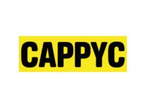 Implementazione europea di CAPPYC – Cannabis Abuse Prevention Program for Young Consumers e valutazione dei risultati utilizzando un sistema di riferimento per esaminare gli atteggiamenti verso l'utilizzo delle droghe