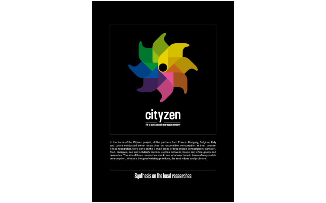 CITYZEN – Research and needs analysis, Synthesis on the local researches
