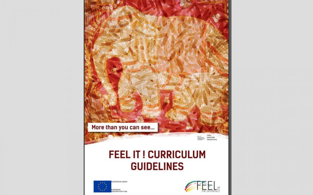 Feel it! Curriculum Guidelines