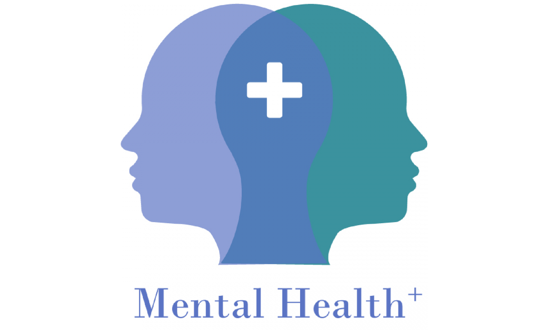 MH+ Mental Health+ : Establishing requirements for positive mental health provision in VET