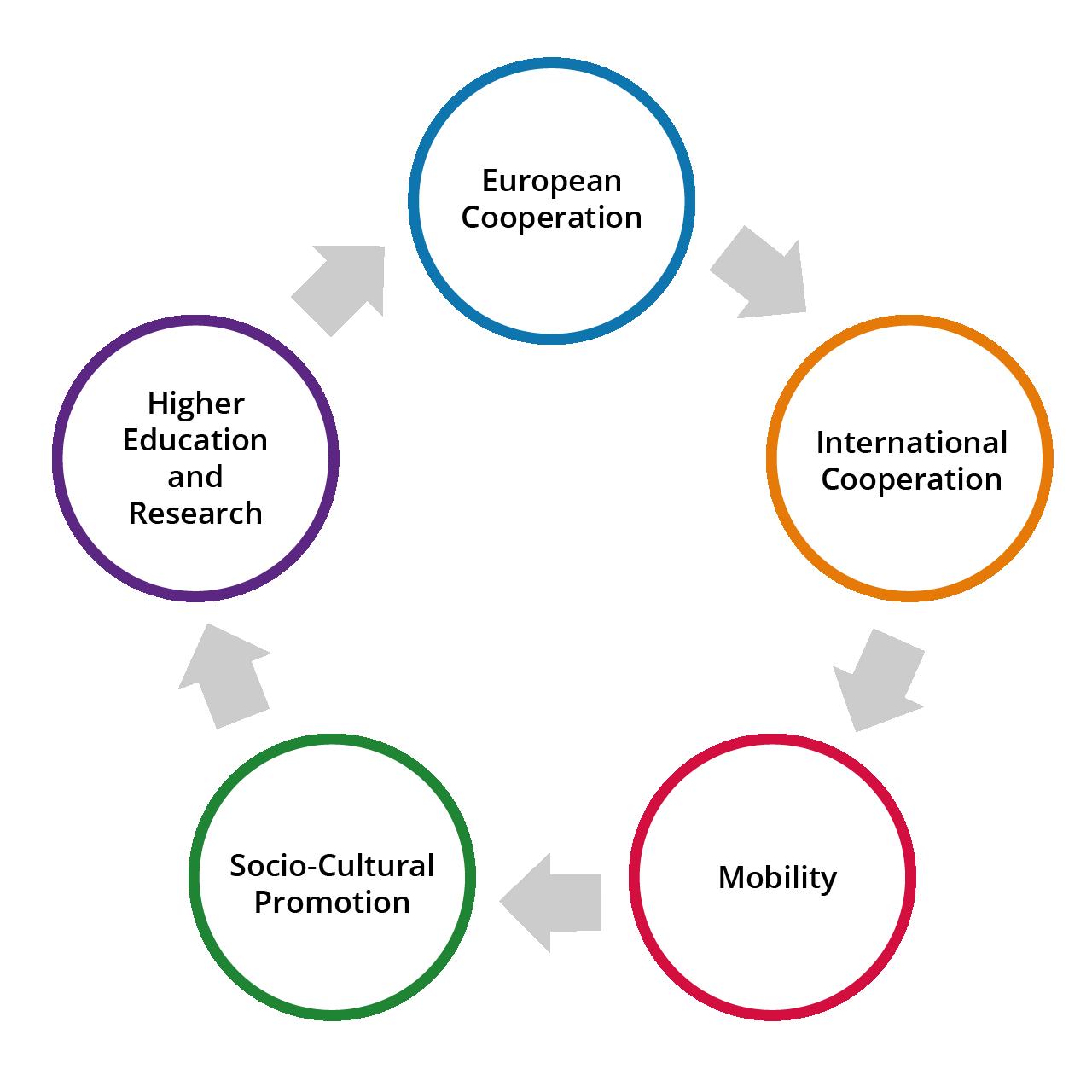 CESIE - Structural organization