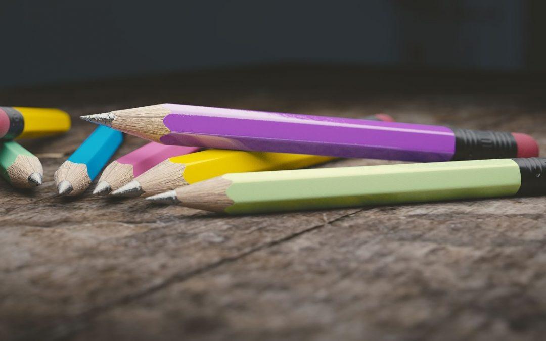 Formazione E-COURSE: Come promuovere il dialogo interculturale nell'educazione primaria?