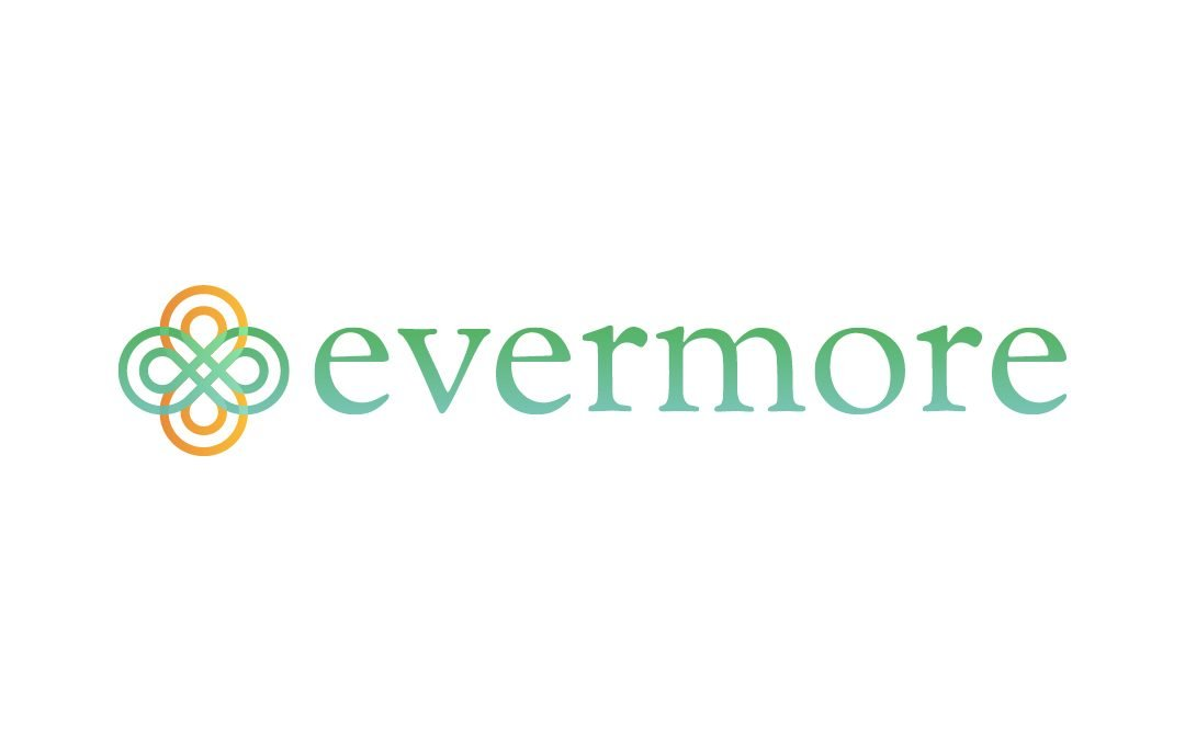 EVERMORE – Enable, Empower, Engage Third Country National Women to enhance professional opportunities