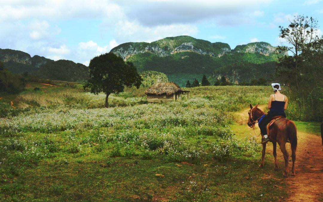 Flip the Switch with EVS: Sentieri naturalistici, escursioni e tiro con l'arco in Ungheria