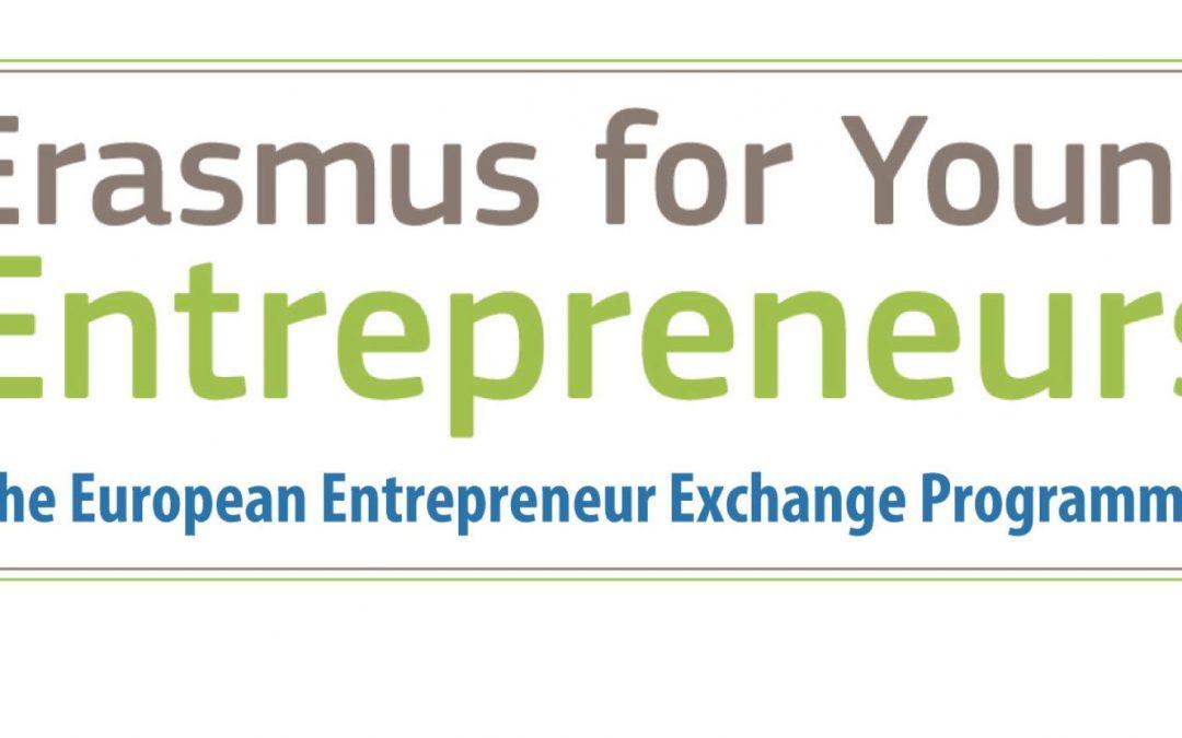 business plan erasmus giovani imprenditori