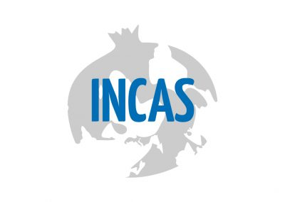 INCAS – INcreasing impaCt in internAtional work placementS