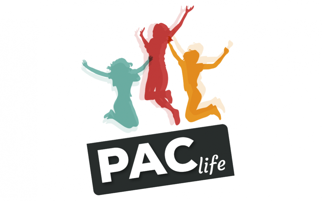 PAClife – Physical and Cultural Activity for Life skills Development