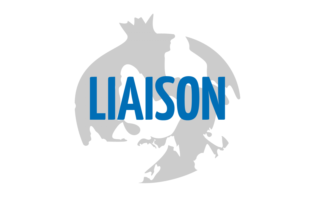 LIAISON – Mutual Learning for Intercultural Appreciation and Strengthened Organisational Networks