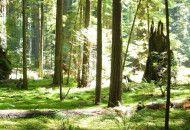 natura-austria-call-web