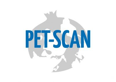PET-SCAN Platform Experts and Tools: Specialised Cyber Activists Network