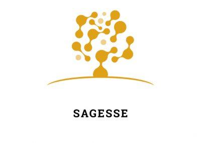 SAGESSE – Amélioration de la Gouvernance dans le système de l'EnSeignement Supérieur en Tunisie