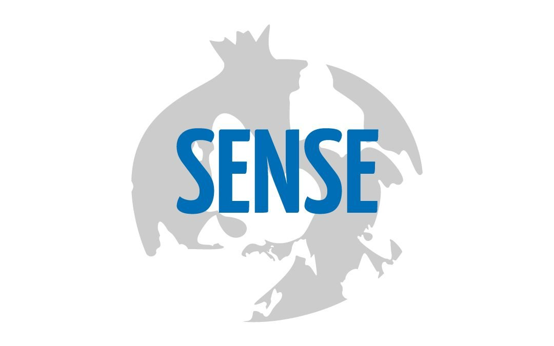 SENSE: Vocation and Sexual Sensitivity – Sexual Diversity in Social Domain Vocational Training