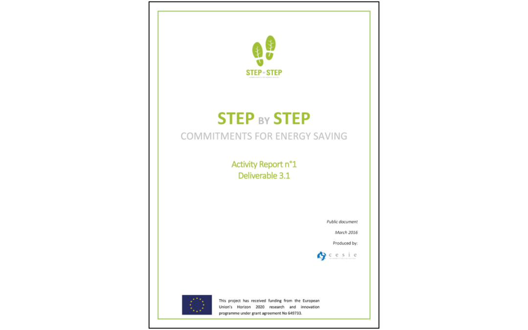 STEP BY STEP – Activity Report