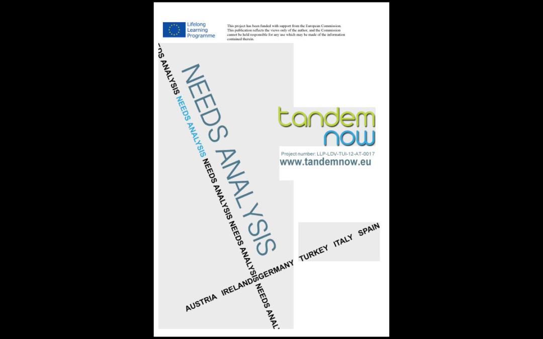 TANDEM NOW – Needs analysis
