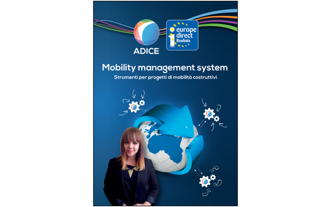 TAPT – Mobility management system – Tools for constructive mobility projects